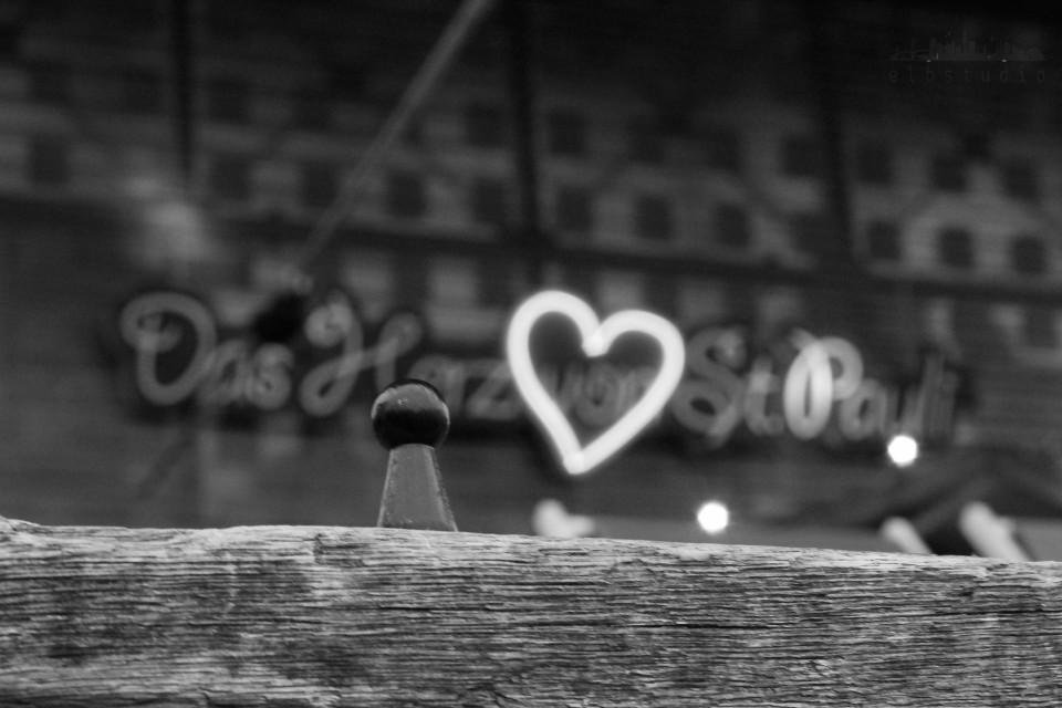 HH Fotomarathon 2014 - Bild 20 - Herz ist Trumpf